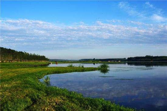 北京通州潮白河沿岸将添6594亩城市森林