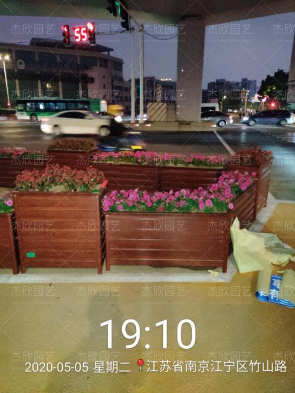 道路隔离带绿化美化贝博软件贝博官网app
